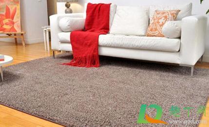 地毯日常怎么清洁(门口地毯怎么消毒)