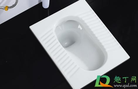 厕所堵了怎么办(刷子掉厕所了能冲下去吗)