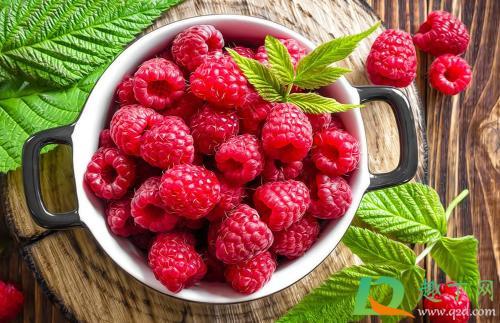 家养树莓怎么种植?家里种树莓哪些是要注意的?